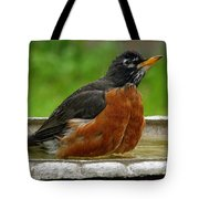 Cool And Cautious Tote Bag