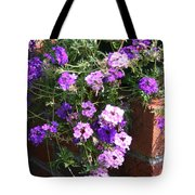 Cool And Warm Tote Bag
