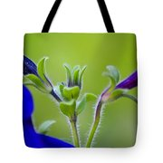 Cool Blue Fuzzy Feeling Tote Bag
