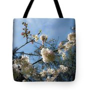 Cool Cherry Blossoms Tote Bag