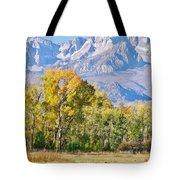 Cool Days Tote Bag