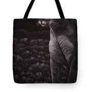 Cool For Cats Tote Bag