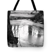 Cool Pool Tote Bag