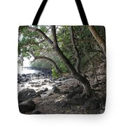 Cool Spot Tote Bag