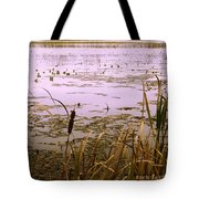 Cool Sunset At White City Tote Bag