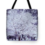 Cool Sunset Essence Of Winter Tote Bag