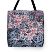 Cool Sunset Field Of Tiger Lillies Tote Bag