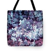 Cool Sunset Jasmine In Bloom Tote Bag