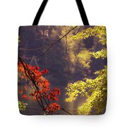 Cool Vermont Autumn Day Tote Bag