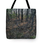 Coolidge Tote Bag
