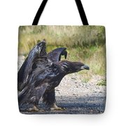 Cooling Down Tote Bag