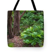 Coontie  Florida Arrowroot Or Indian Breadroot Tote Bag