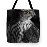 Coopers Hawk Bw Tote Bag
