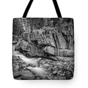 Coos Canyon Black And White Tote Bag