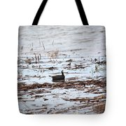Coot In The Weeds Tote Bag