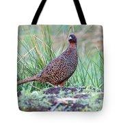 Copper Pheasant Tote Bag