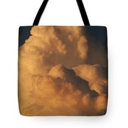 Coppermouth Tote Bag