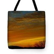 Coppertone Tote Bag