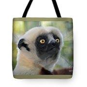Coquerel's Sifaka Lemur Tote Bag
