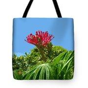 Coral Bush Jatropha Multifida With Flower And Fruit Tote Bag