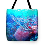 Coral Candy Tote Bag