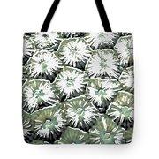 Coral Close Up  Tote Bag