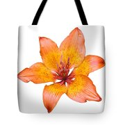 Coral Colored Lily Isolated On White Tote Bag