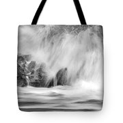 Coral Cove Park 0598 Tote Bag