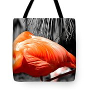 Coral Creation Tote Bag