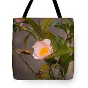 Coral Camellia Tote Bag
