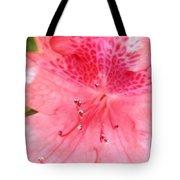 Coral Pink Azalea Goodness Tote Bag
