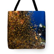 Coral Reef And Diver  Tote Bag