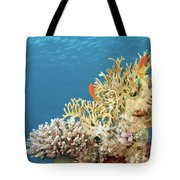 Coral Reef Eco System Tote Bag