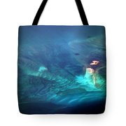 Coral Reef From 28000 Feet Tote Bag