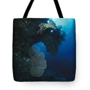 Coral Reef Wall With Seafan And Hard Tote Bag