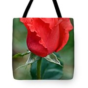 Coral Rosebud At Pilgrim Place In Claremont-california   Tote Bag