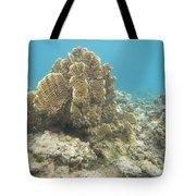 Coral Tree Tote Bag