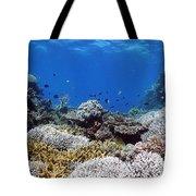 Corals Garden Tote Bag
