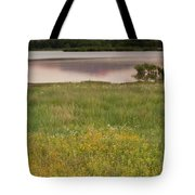Corepsis Blooming At The Quanah Parker Lake Tote Bag