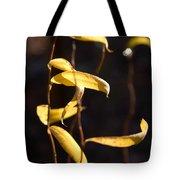 Corkscrew Willow Tote Bag