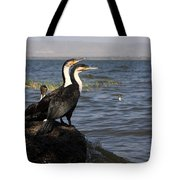 Great Rift Cormorants Tote Bag