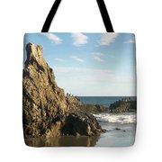 Cormorants At El Madador Beach Tote Bag