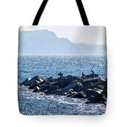 Cormorants At The Cobb - Lyme Regis Tote Bag