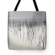 Cormorants Waiting For The Night Tote Bag