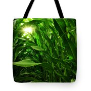 Corn Field Tote Bag