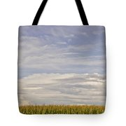 Corn Field In Sunset II Tote Bag