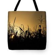 Corn Field Sunrise Tote Bag