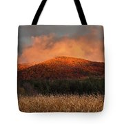 Corn Field Sunset Tote Bag