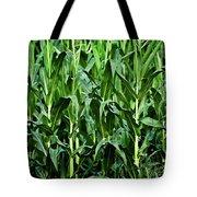 Corn Field's First Row Tote Bag