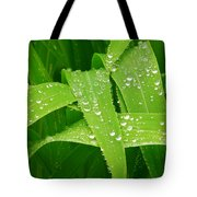 Corn Leaves After The Rain Tote Bag